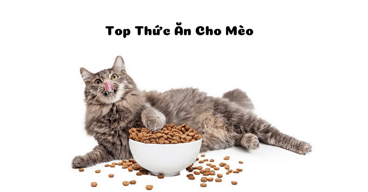 Thuc An Cho Meo Tot Nhat